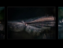 Rob-Spinnen-drieluik-VNF