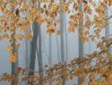 herfstbeuken Oranjewoud