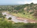 CRI006 Tanzania.jpg