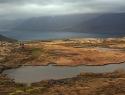 fjordlandschap-ijsland