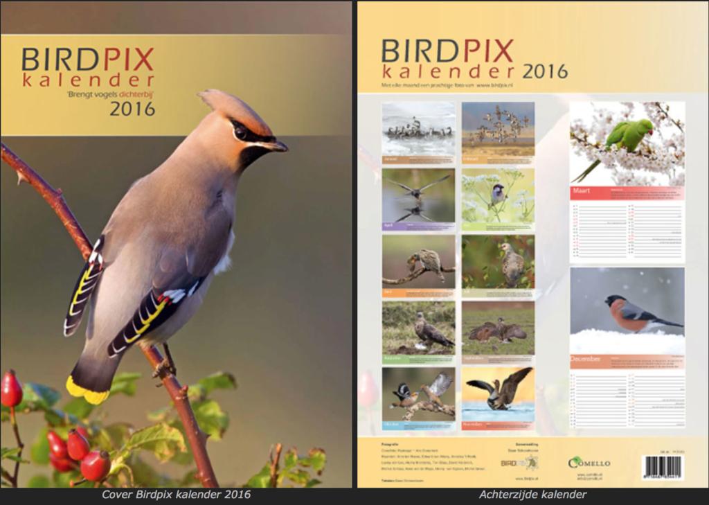 Birdpix kalender 2016 Henny Brandsma