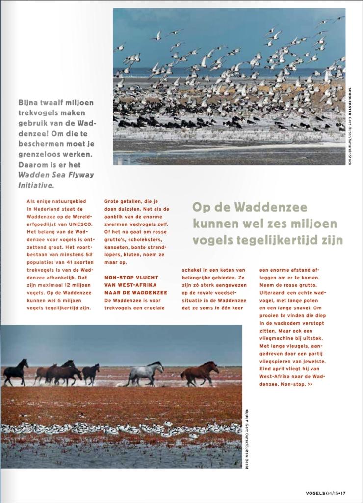Gert Buter Vogels web