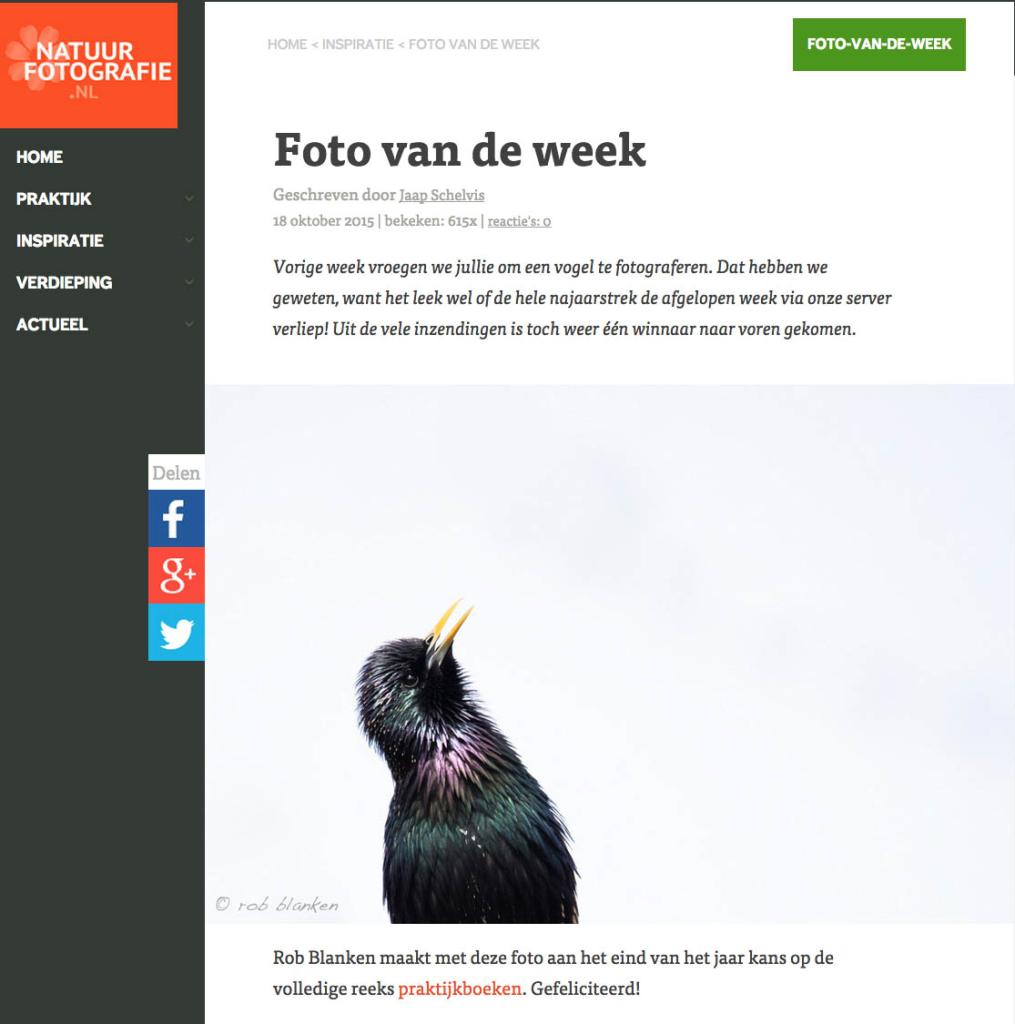 Rob Blanken vogelfoto Natuurfotografie