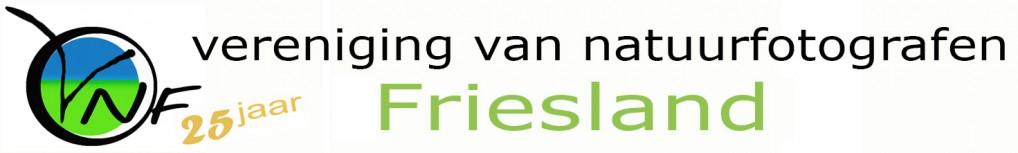 VNF-Friesland Logo