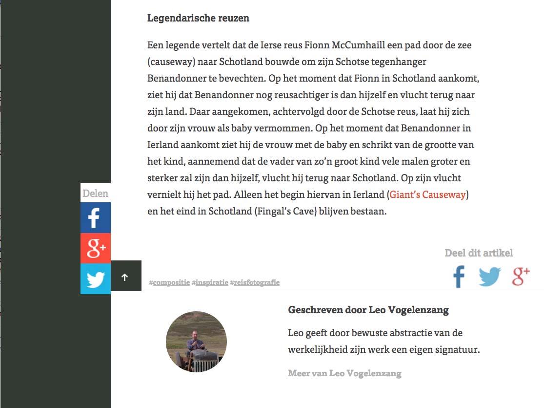 Leo Vogelenzang web 7