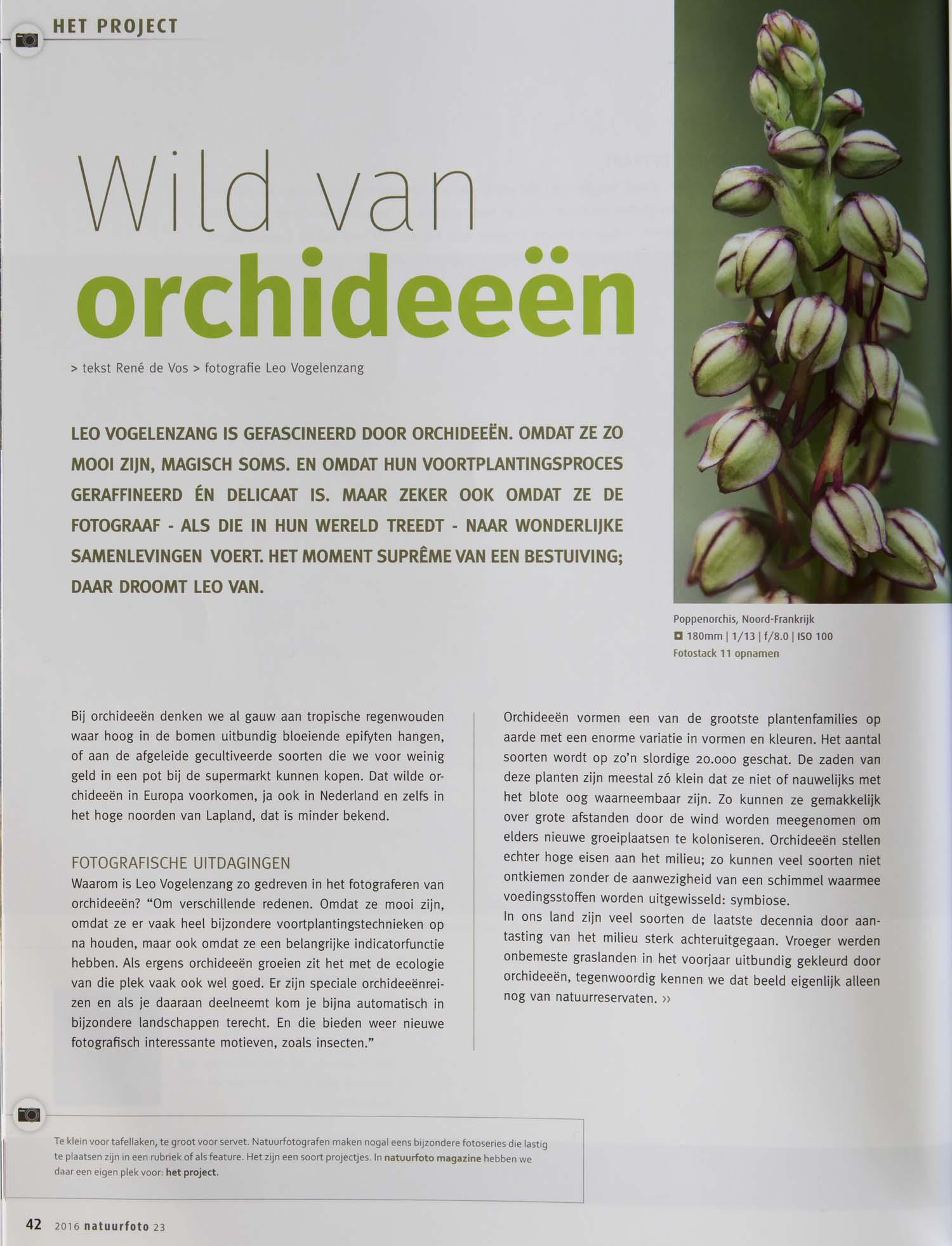 Orchideeen Leo Vogelenzang 1