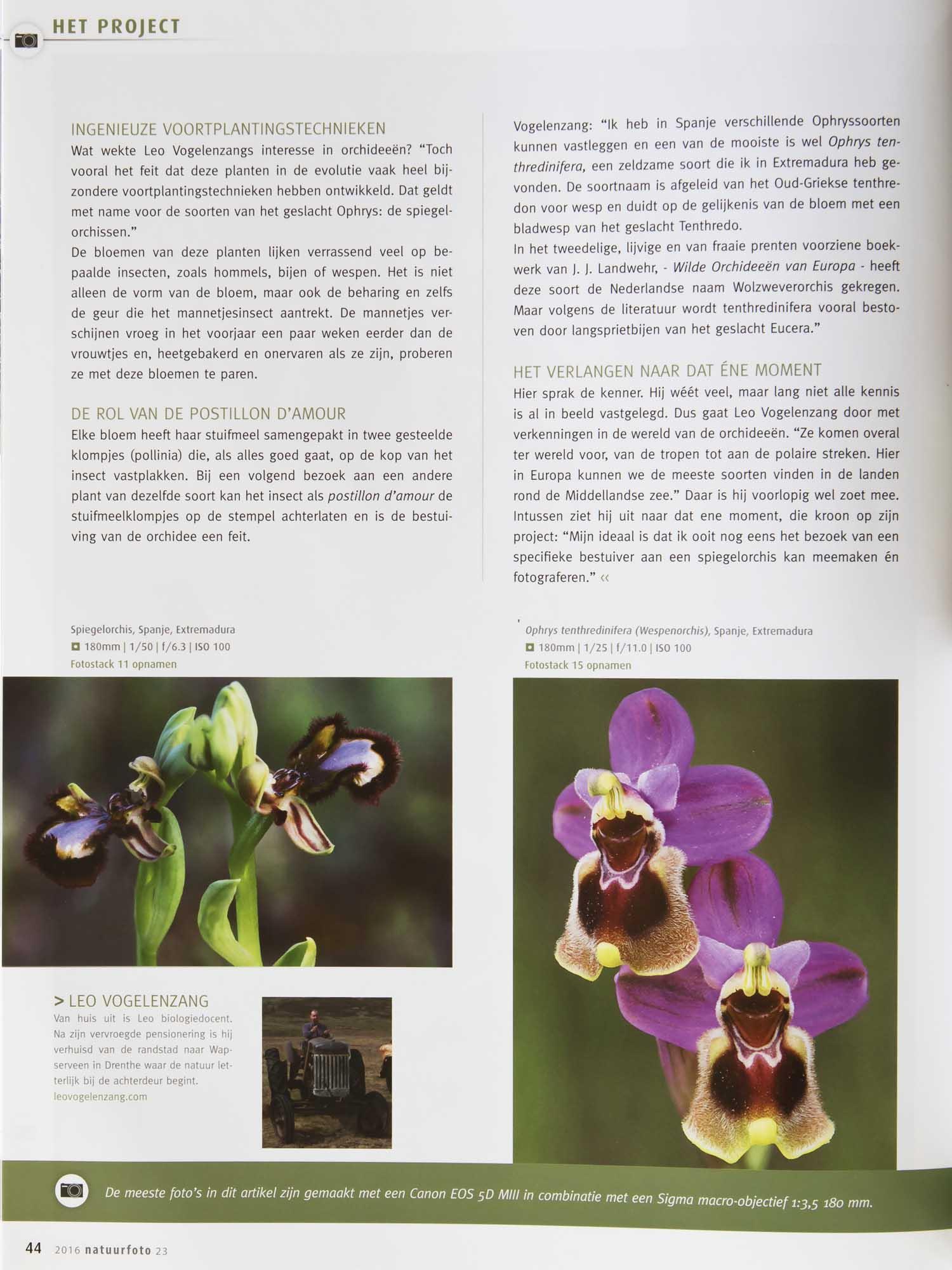 Orchideeen Leo Vogelenzang 3